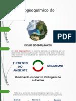Ciclo Biogeoquímico Do Fósforo