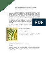 AVANCE DE CLASES.pdf
