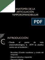 ANATOMia TEMPOROMANDIBULAR