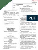 Ley de La Carrera Del Trabajador Judicial Ley 30745