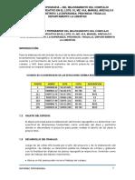 Informe Topografico - Manuel Arevalo II Etapa