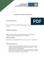 Formato Modelo Informe Proyecto Integrador