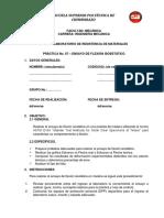 Guia 7 Ensayo de Flexión Isoestático (NF)