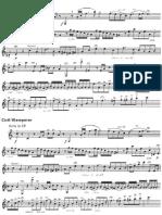 Cadenza Mozart Horn Concerto No. 4 (1st Movement)
