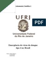 Emergência Da Dengue Tipo 4 No Brasil