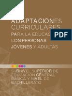 EPJA_Adaptaciones-curriculares_Introduccion-general.pdf