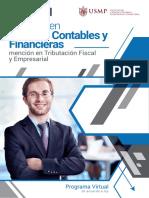 Brochure Contabilidad Finanzas Tfe