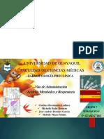 Faramacologia Preclinica-Vias de Administracion