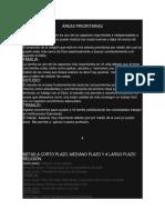 ÁREAS PRIORITARIAS.docx