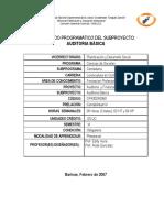AuditBsica-VI-1.pdf