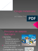 Cirugi_a Veterinaria 2