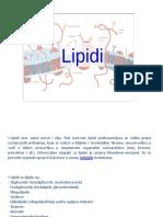 143822328-Lipidi.pptx