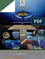 Aula 2 - Bioquímica - Medicina UFAC 2018.1 - Água.pdf