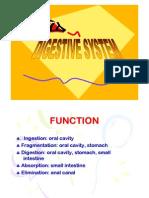 Digestive System Phki [Compatibility Mode]
