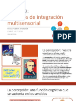Práctica 2 - Procesos de integración multisensorial.pdf