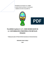 Documento Tillandsias Capillaris R y P