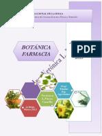 Apuntes Botanica 2015 Parte i c