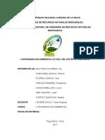 contaminación-ambiental-Pumahuasi (1).docx