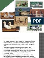 3 Prinsip Budidaya Ternak Unggas Air.pptx