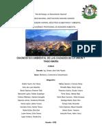 Grupo N 01 Exposiciòn N 01 Diagnóstico Ambiental de La Ciudad de Tingo Marìa y La Uniòn MyCC X 11-05-2018