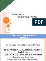 principios-presupuestarios