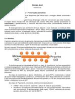 Resumo Bioenergética.docx