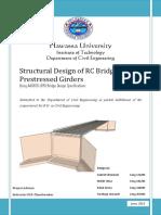 Bridge Project Final.pdf