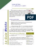 guia metas.pdf