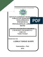 Monografia Fiebre Tifoidea