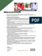Cartilla Politica Calidad Seguridad Salud Ocupa Medio Ambiente 2018 Anve...