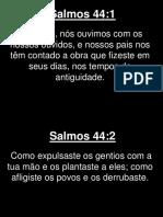 Salmos - 044