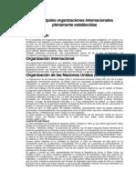 Principales Organizaciones Internacionales Plenamente Establecidas