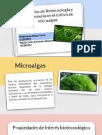 Diapositivas Final Bio