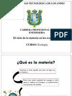 Ciclo de La Materia en El Ecosistema