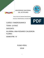 Univeridad Nacional Del Altiplano Fanero