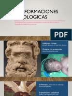Malformaciones mitologicas.pptx
