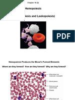 C19 2 Hemopoiesis Eythropoiesis Leukopoiesis