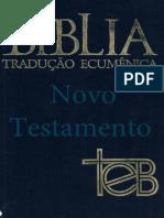 Bíblia de Estudo Ecumenica - Novo Testamento