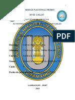 NIA 501 - EVIDENCIA DE AUDITORÍA.docx