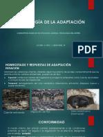 Fisiología de La Adaptación en Vertebrados e Invertebrados
