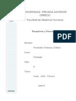 39825497-Informe-de-fisiologia-Nº-03 (1).docx