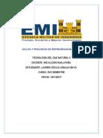 Ciclos y Procesos de Refrigeración de Gnl