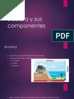 Biosfera y Sus Componentes