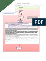 Digestion Proteina Carbohidratos Lipiidos