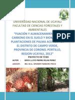 Proyecto de Tesis Lloid-carbono en Palma Aceitera