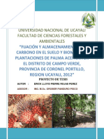 PROYECTO DE TESIS LLOID-CARBONO EN PALMA ACEITERA.pdf