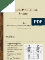 Musculoskeletal(Sir Mhacky)
