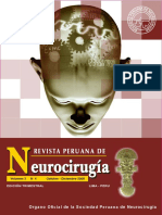 Absc-Cerebral-Rev-NeurocJCSP-2008.pdf