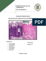 metaplasia-1