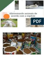Livro Alimentando Animais